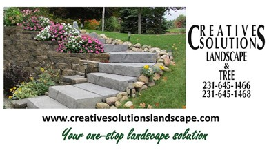 creative_solutions_landscape