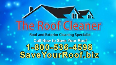 roof_cleaner